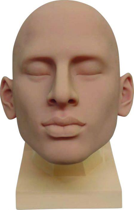 Männlicher Kopf ohne Verletzungen